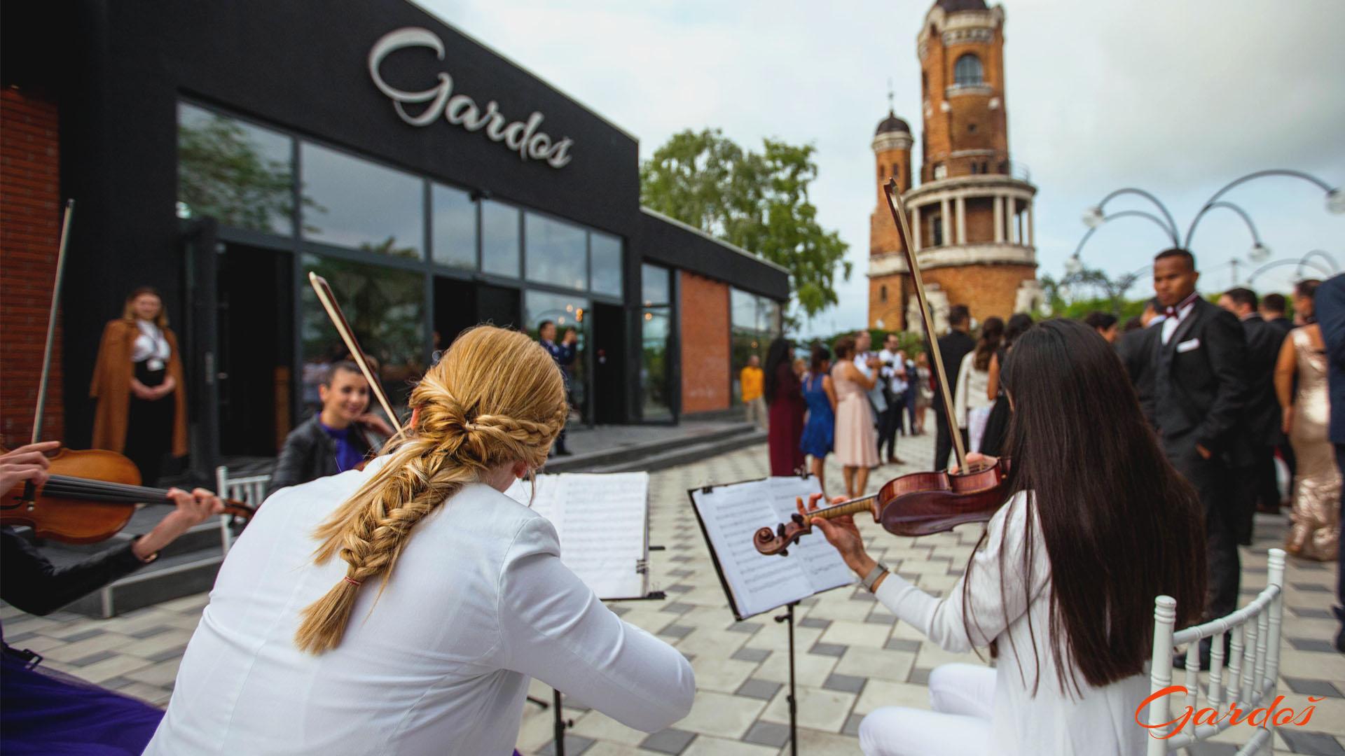 Violina na otvorenom
